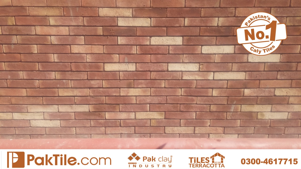Bricks front wall tiles